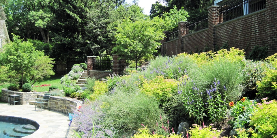 Landscaping-g_naturalized-perennial-garden-1