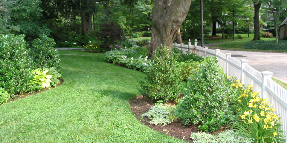 Landscaping-i_streetside-plantings