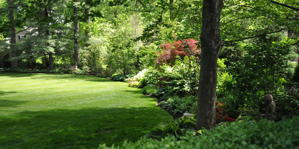 Landscaping-r_woodland-edge