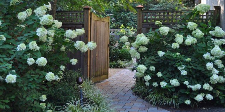 patio-h_paver-walkway